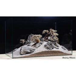 Композиция для аквариума. Бонсаи и Карпатский камень