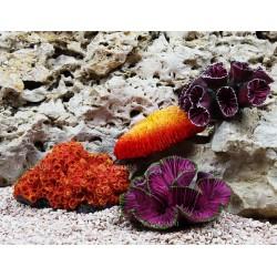 Набор кораллов Trixie 4 шт