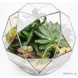 Флорариум Globe maxi