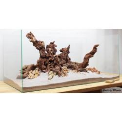 Композиция Дракон + Коралловое дерево К25 (от 200л)