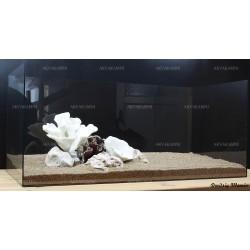 Композиция К61 для аквариума с кораллами (от 90л)